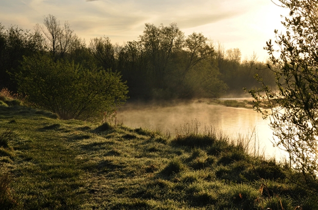 river_suir_fog