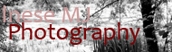 inesemjphotography