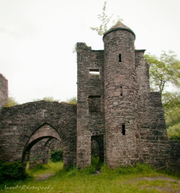 carey castle