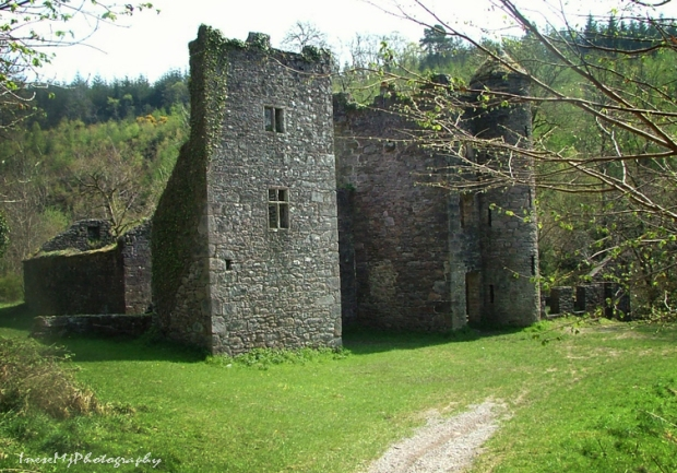 Carey castle