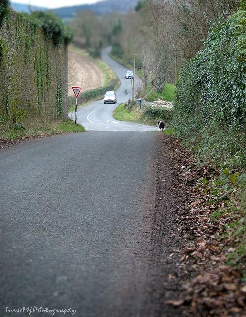 Marlfield road