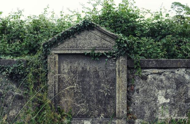 butler graves