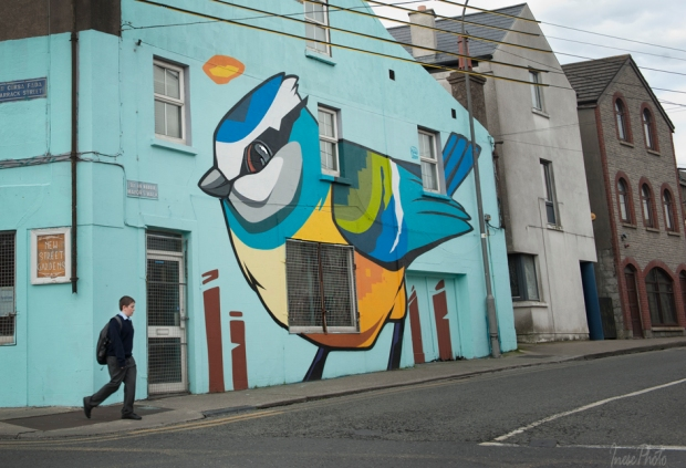 waterford walls