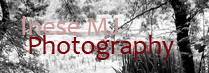 wwww.inesemjphotography.com