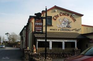 cat's bar
