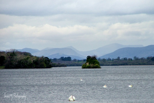 Killarney NP